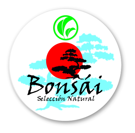 SL_BONSAI_SELECCION_ok